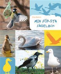 E-bok Min första fågelbok av Anja Baklien