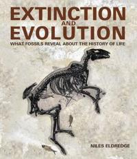 Extinction and Evolution