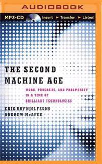 The Second Machine Age: Work, Progress, and Prosperity in a Time of Brilliant Technologies