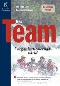 Nya team i organisationernas värld