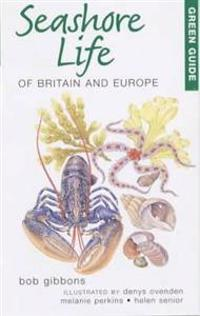Green Guide Seashore Life of Britian and Europe