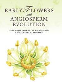 Early Flowers and Angiosperm Evolution