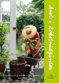 Året i köksträdgården : odlarglädje månad för månad