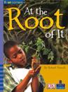 Four Corners: At the Root of it (Pack of Six)