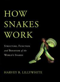 How Snakes Work