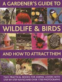 A Gardener's Guide to Wildlife & Birds and How to Attract Them