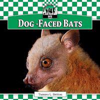 Dog-Faced Bats