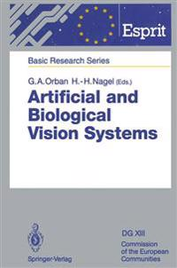 Artificial and Biological Vision Systems