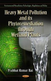 Heavy Metal Pollution and Its Phytormediation Through Wetland Plants