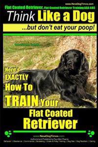 Bilde av Flat Coated Retriever, Flat Coated Retriever Training Aaa Akc - Think Like A Dog But Don't Eat Your Poop! - Flat Coated Retriever Breed Expert Trainin