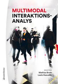 Multimodal interaktionsanalys