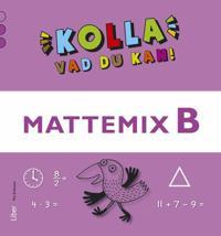 Kolla vad du kan Mattemix B