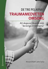 De tre pelarna i traumamedveten omsorg – Att skapa en läkande miljö 'de övriga 23 timmarna'
