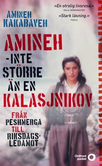Amineh – inte större än en kalasjnikov : från peshmerga till riksdagsledamot