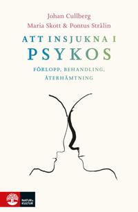 Att insjukna i psykos : förlopp behandling återhämtning
