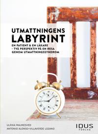 Utmattningens labyrint : en patient & en läkare – två perspektiv på en resa