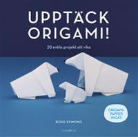Upptäck origami! : 20 enkla projekt att vika