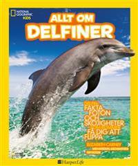 Allt om delfiner