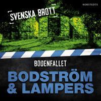 Svenska brott – Bodenfallet