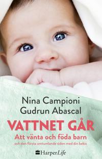 Vattnet går : att vänta och föda barn och den första omtumlande tiden med din bebis