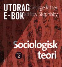 Sociologisk teori e-bok