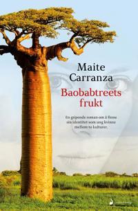 Bilde av Baobabtreets Frukt