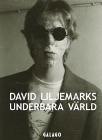 David Liljemarks underbara värld : verk i urval 1978-2020