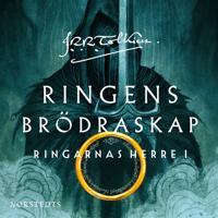 Ringens brödraskap – Ringarnas herre