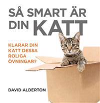 Så smart är din katt : klarar din katt dessa roliga övningar?