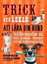 Trick och lekar att lära din hund : så förvandlar du ditt älskade husdjur..