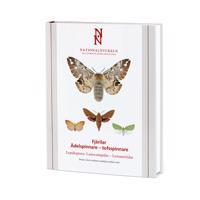 Fjärilar : ädelspinnare – tofsspinnare. Lepidoptera : lasiocampidae – lymantriidae