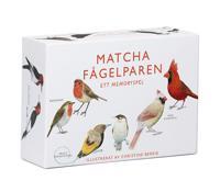Matcha fågelparen ett memoryspel