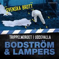 Svenska brott – Trippelmordet i Uddevalla