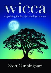 Wicca : vägledning för den självständiga utövaren