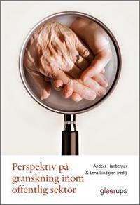 Perspektiv på granskning inom offentlig sektor : Med äldreomsorgen som exempel