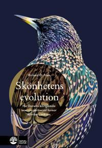 Skönhetens evolution : hur Darwins bortglömda teori om det sexuella urvalet formar djurriket – och oss