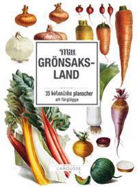 Mitt grönsaksland: 35 botaniska planscher att färglägga