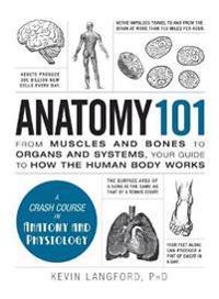 Bilde av Anatomy 101